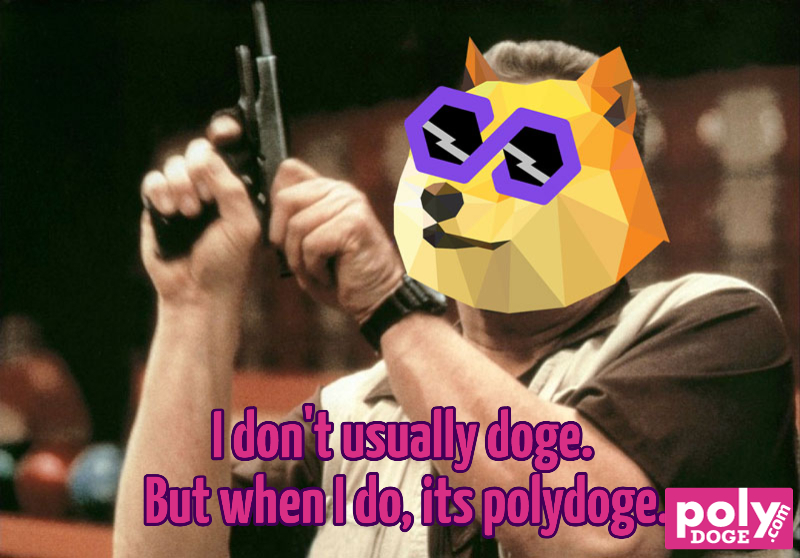 i-dont-usually-doge-but-when-i-do-its-polydoge-681-1