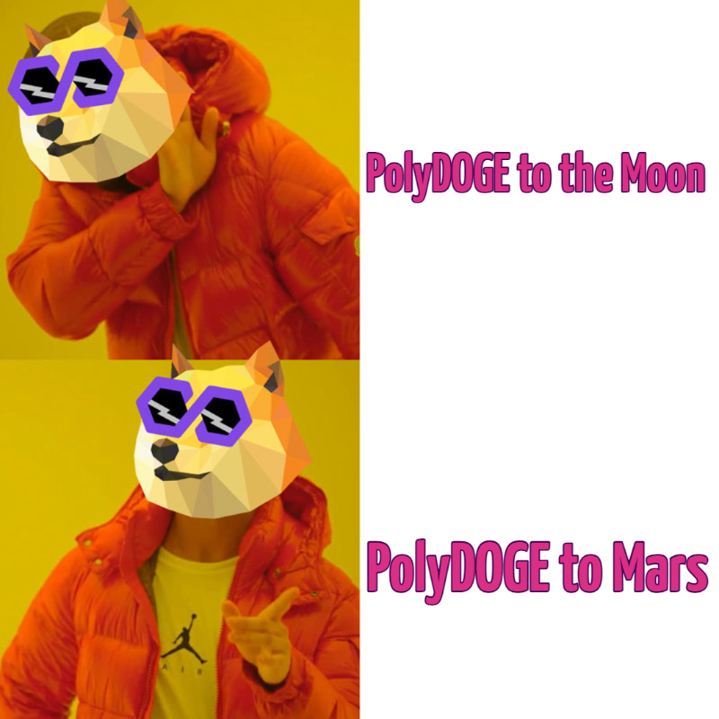 polydoge-to-the-moon-polydoge-to-mars-860-1