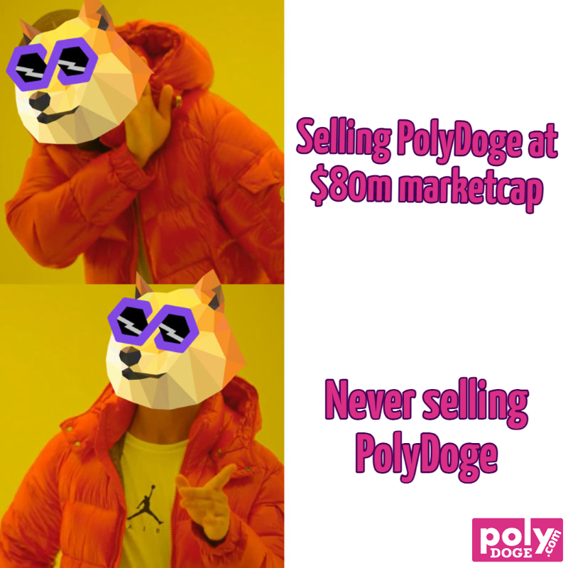 selling-polydoge-at-80m-marketcap-never-selling-polydoge-651-1