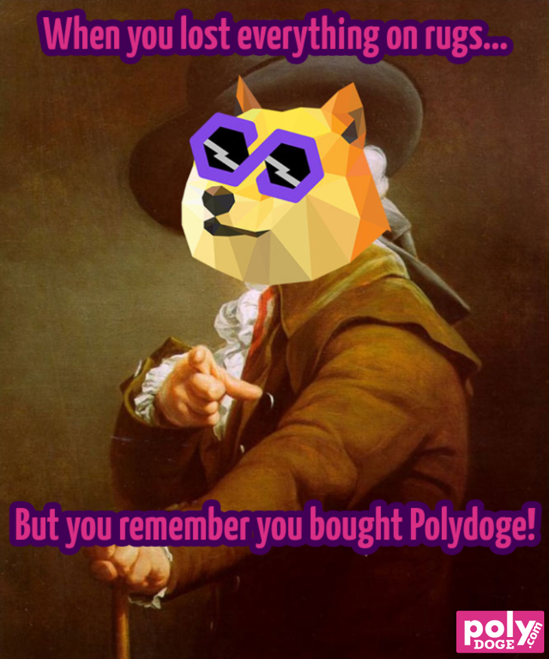 when-you-lost-everything-on-rugs-but-you-remember-you-bought-polydoge-683-1